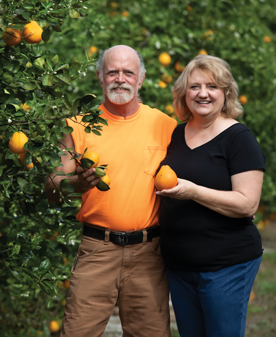Dooley Groves; Florida citrus farms